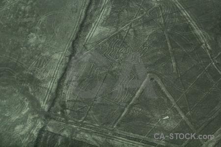 Aerial geoglyph spider animal nazca lines.
