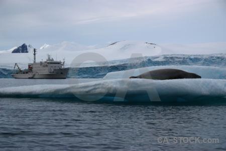 Akademik ioffe sky antarctic peninsula water antarctica cruise.