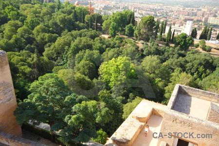 Alhambra forest fortress above la alhambra de granada.