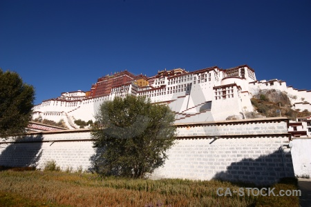 Altitude wall potala palace tree unesco.