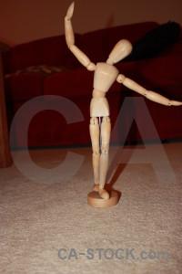 Anatomy model.