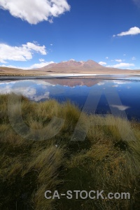 Andes bolivia reflection grass sky.