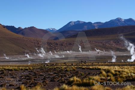 Andes landscape bush geyser el tatio.