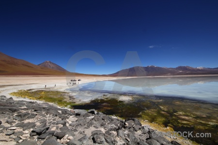 Andes reflection licancabur plant altitude.