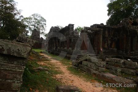 Angkor khmer siem reap tree sky.