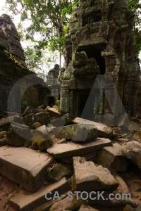 Angkor unesco stone fungus khmer.
