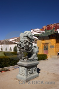 Animal china potala palace asia tibet.