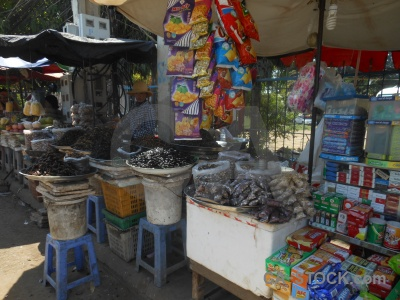 Animal market insect person kampong thom.