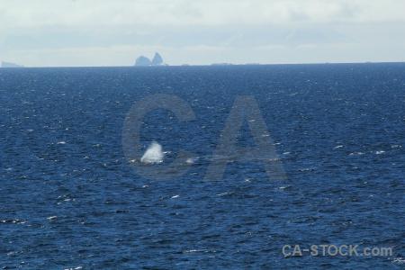Antarctic peninsula ice cloud antarctica cruise sea.