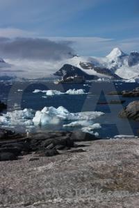 Antarctic peninsula petermann island day 8 snow water.