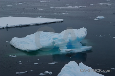 Antarctic peninsula sea gunnel channel adelaide island water.