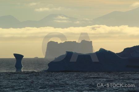 Antarctic peninsula south pole bellingshausen sea adelaide island day 5.