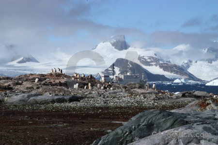 Antarctic peninsula south pole snow antarctica ice.