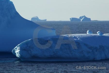 Antarctica antarctic peninsula antarctica cruise south pole sky.