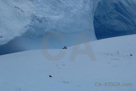 Antarctica cruise ice drake passage day 4 iceberg.