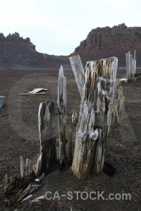 Antarctica cruise sand south pole whalers bay wood.