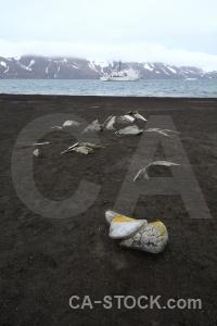 Antarctica cruise sky volcanic day 11 antarctica.