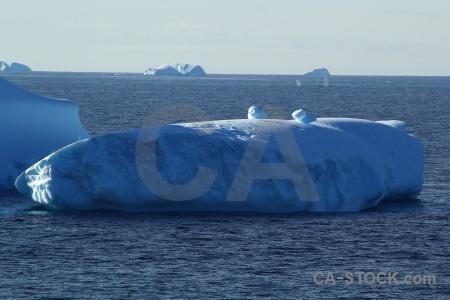 Antarctica day 5 iceberg sea ice.