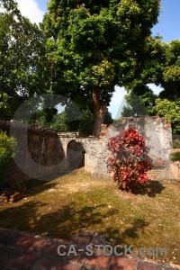Archway tree asia vietnam unesco.