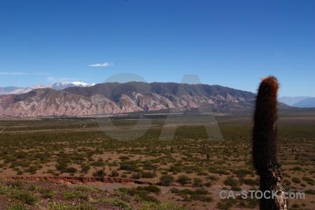 Argentina mountain cactus salta tour 2 south america.