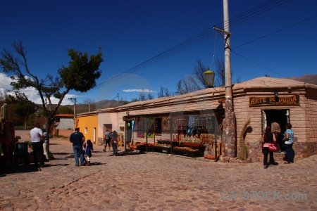 Argentina salta tour tree sky south america.