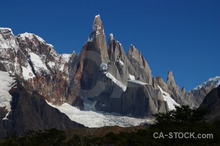 Argentina tree patagonia senda a laguna torre trek.