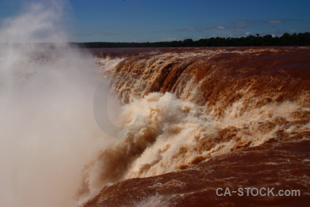 Argentina tree waterfall iguassu falls iguacu.
