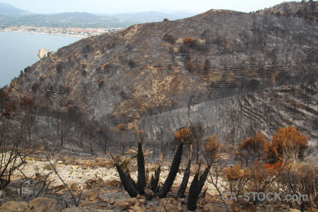 Ash montgo fire javea spain burnt.