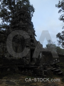 Asia fungus khmer unesco buddhist.