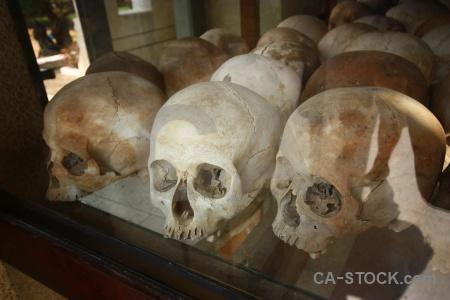 Asia killing fields skull choeung ek genocide.