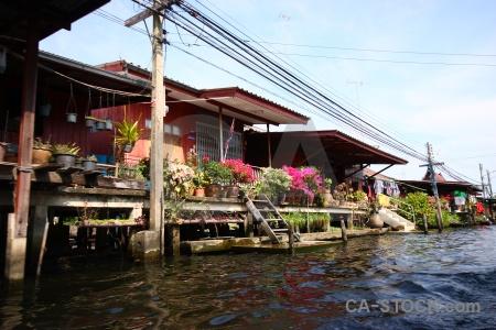 Asia southeast asia thailand ton khem plant.