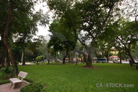 Asia vietnam sky grass hanoi.