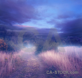 Backgrounds pink premade purple fantasy.