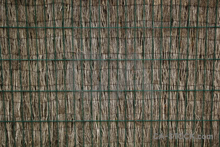 Bamboo europe javea texture spain.