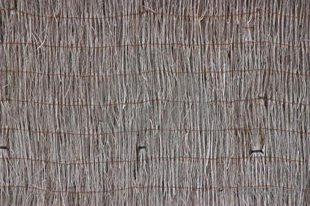 Bamboo wood stick nature texture.