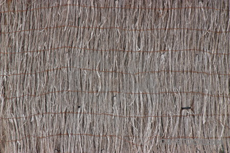 Bamboo wood stick texture nature.