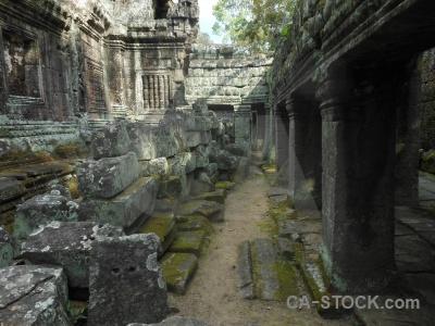 Banteay kdei temple column cambodia fungus.