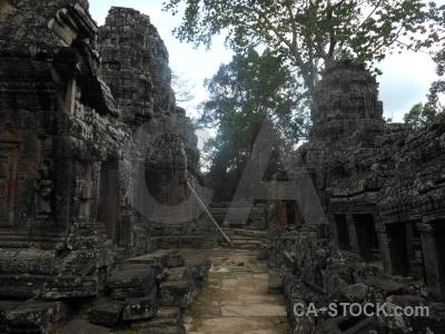 Banteay kdei tree buddhism angkor buddhist.