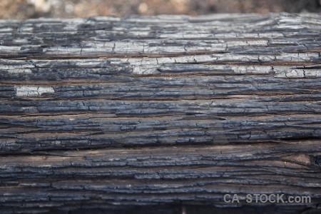 Bark spain wood europe javea.