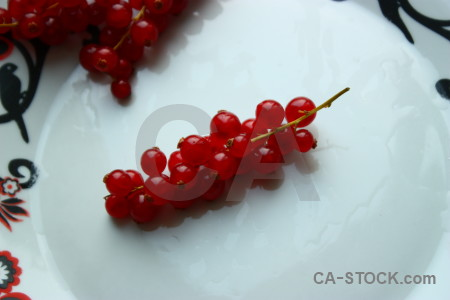 Berry red food fruit white.