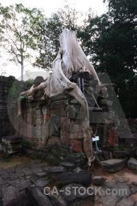 Block southeast asia stone lichen ruin.