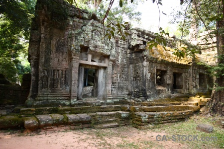 Block ta prohm lichen building tree.