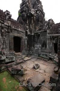 Block temple lichen asia fungus.