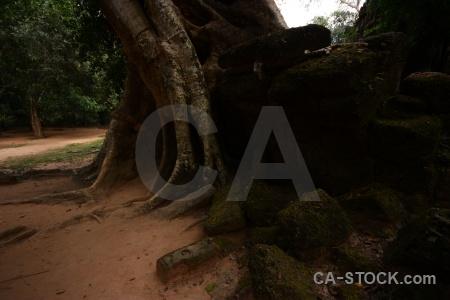 Block tomb raider ruin sky angkor.