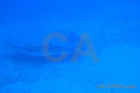 Blue underwater wreck.