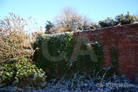 Blue wall cyan frost.
