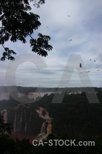 Brazil iguacu falls cloud south america bird.