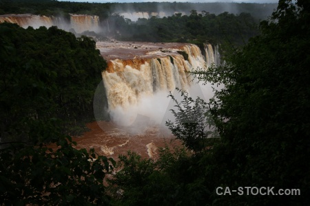 Brazil iguazu river unesco tree iguassu falls.
