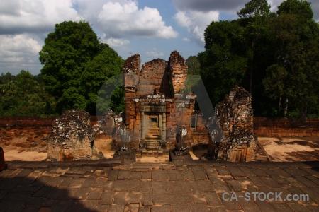 Brick siem reap unesco fungus southeast asia.