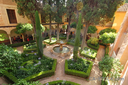 Brown alhambra fortress la de granada garden.